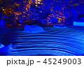 ライトアップ 寺院 萬松山の写真 45249003