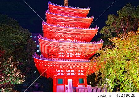 東長寺 博多ライトアップウォーク(博多千年煌夜) 45249029