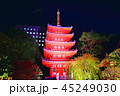 夜 ライトアップ 寺院の写真 45249030