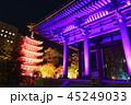 夜 ライトアップ 寺院の写真 45249033