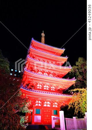 東長寺 博多ライトアップウォーク(博多千年煌夜) 45249036