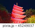 夜 ライトアップ 寺院の写真 45249037