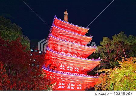東長寺 博多ライトアップウォーク(博多千年煌夜) 45249037