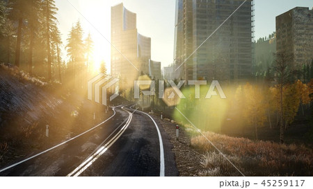 forest road to the city at sunset 45259117