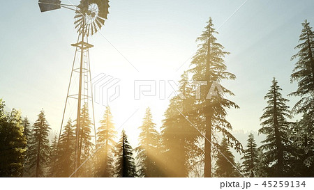 Typical Old Windmill turbine in forest at sunset 45259134