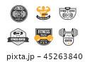 フィットネス スポーツ 同好会のイラスト 45263840