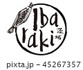 ibaraki 茨城 筆文字のイラスト 45267357