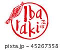 ibaraki 茨城 筆文字のイラスト 45267358