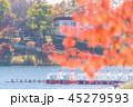 聖湖 紅葉 湖の写真 45279593