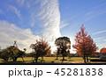 空 コピースペース すじ雲の写真 45281838