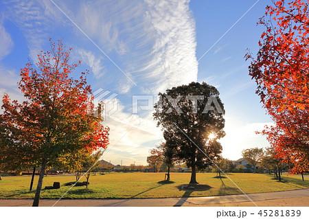 秋の雲 すじ雲 青空と白い雲 大刀洗運動公園(大刀洗町) 45281839