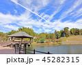 天拝山歴史自然公園 公園 池の写真 45282315