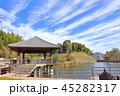 天拝山歴史自然公園 公園 池の写真 45282317