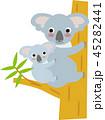 動物 コアラ 親子のイラスト 45282441