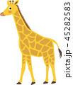キリン 動物 ベクターのイラスト 45282583