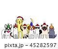 ベクター 動物 犬のイラスト 45282597