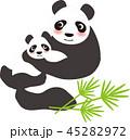 パンダの親子 45282972
