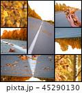 Autumn season beautiful, collage 45290130