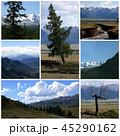 Nature landscape collage 45290162