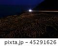 自然 風景 米の写真 45291626