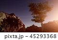 丘 丘陵 坂のイラスト 45293368