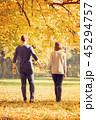 秋 カップル 二人の写真 45294757