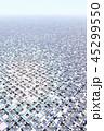格子大地 45299550