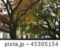原爆ドーム Atomic Bomb Dome 世界遺産 世界文化遺産 ユネスコ 広島 広島市  45305154