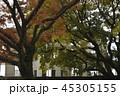 原爆ドーム Atomic Bomb Dome 世界遺産 世界文化遺産 ユネスコ 広島 広島市  45305155
