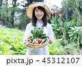 農業 野菜 生産者 収穫 農家 45312107