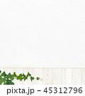 壁 背景 蔦のイラスト 45312796