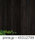背景 壁 蔦のイラスト 45312799