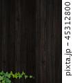 背景 壁 蔦のイラスト 45312800