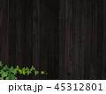 背景 壁 蔦のイラスト 45312801