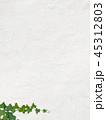 壁 背景 蔦のイラスト 45312803
