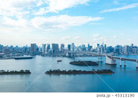 (東京都-都市風景)展望台から見るレインボーブリッジと湾岸風景10 45313190