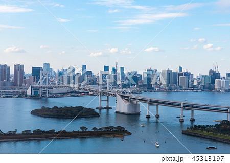 (東京都-都市風景)展望台から見るレインボーブリッジと湾岸風景3 45313197