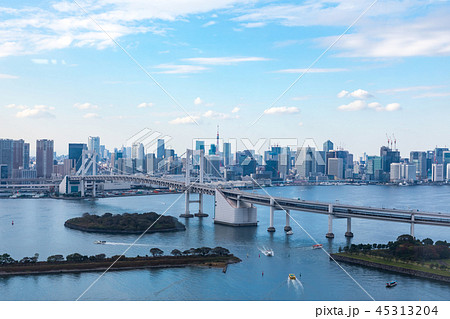 (東京都-都市風景)展望台から見るレインボーブリッジと湾岸風景11 45313204