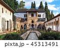 Generalife palace pool 45313491