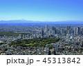 都市風景/新宿と富士山/Aerial view、2018撮影 45313842