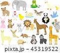 動物のセット 45319522