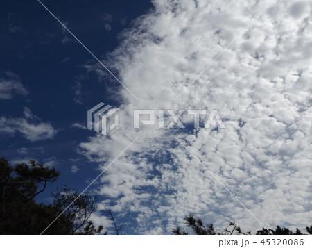 検見川の青い空に白い雲 45320086