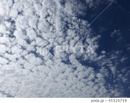 検見川の青い空に白い雲 45320739