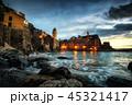 景色 風景 沖合の写真 45321417
