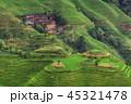 中国 農園 農場の写真 45321478
