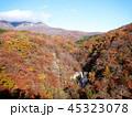 秋の霧降ノ滝 頂部の滝と紅葉 45323078
