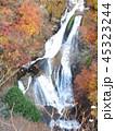 秋の霧降ノ滝 下部の滝と紅葉 45323244