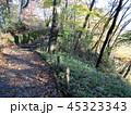 秋の霧降ノ滝 遊歩道と紅葉 45323343