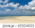 ビーチ 米原 リゾートの写真 45324033