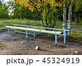 景色 パーク スポーツの写真 45324919